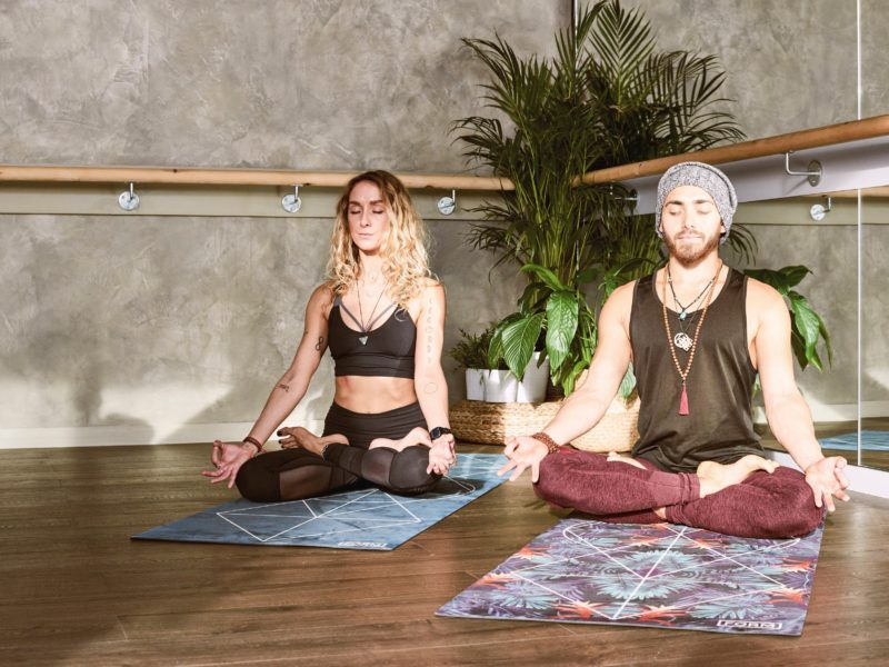 The 8 Winter Healers of Yoga